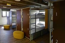 Bunk Beds in Shared Dormitory