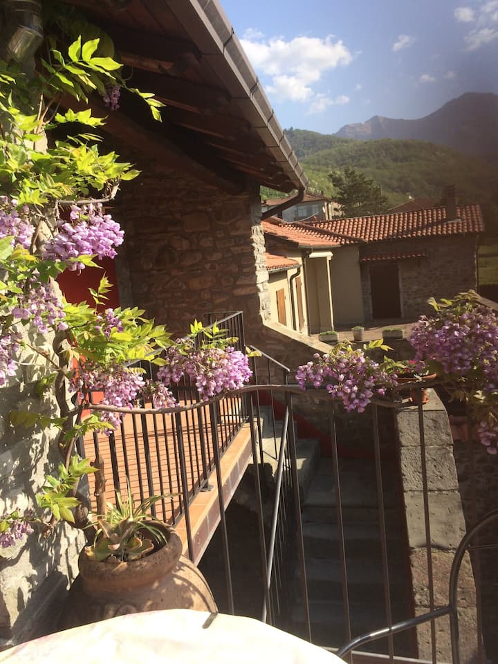 Cà d'Pedina - Lunigiana/Toscana - App.to Glicine