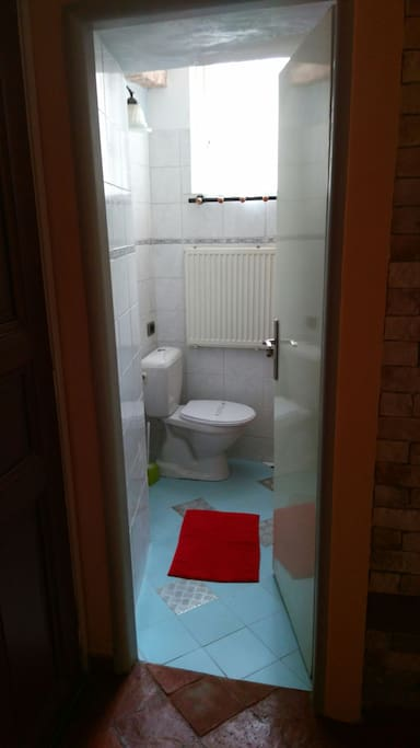 Bathroom - toilet with bidet and shower