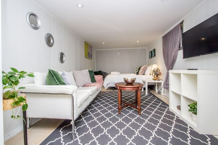 Cozy and charming basement apartment/ Downtown