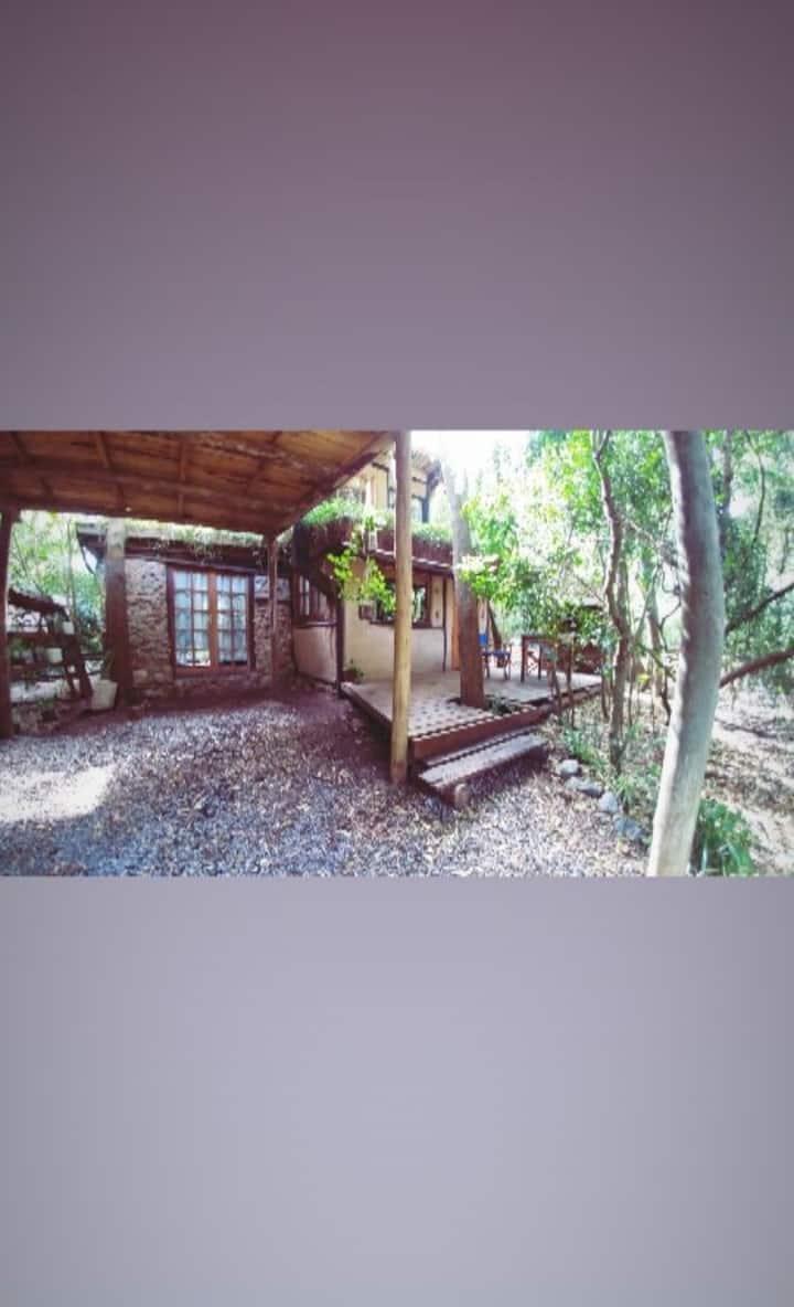 Cabaña en Barro y techo vivo