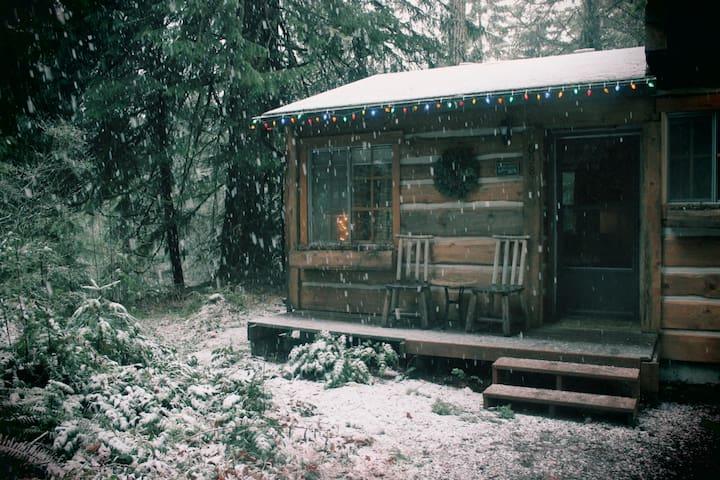 Rustic Sandy River Cabin  - Rhododendron - Mökki