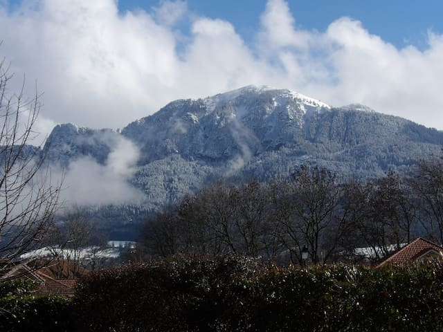 Villa entre Lacs et Montagnes - Etaux - Villa