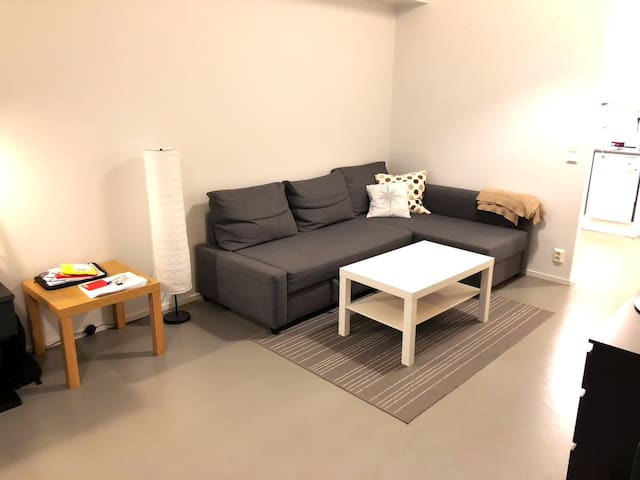 Spacious loft-type apartment 7min away from center