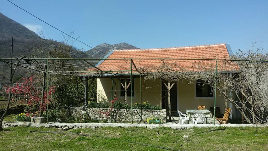 Charming home with beautiful garden - Godinje - 獨棟