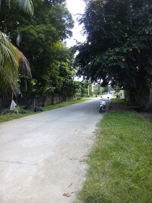 F Tayko Street Poblacion Vallehermoso, Negros Oriental 6224