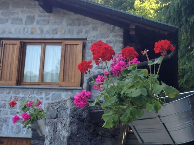 lago di como, casa con ampio giardino - Veglio - Dům