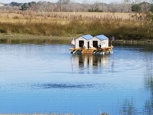 The Duck Condos on the front pond!