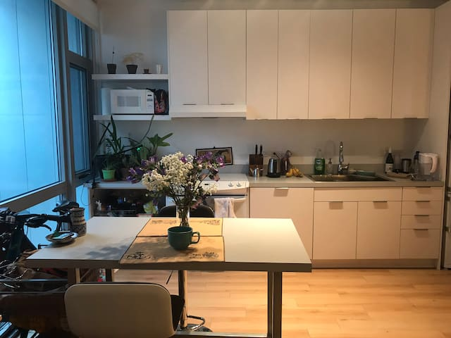 Comfy Apt in Shaw/Centrally Located in DC