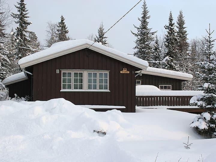 Bergsbu - hjemmekoselig hytte i Eggedal