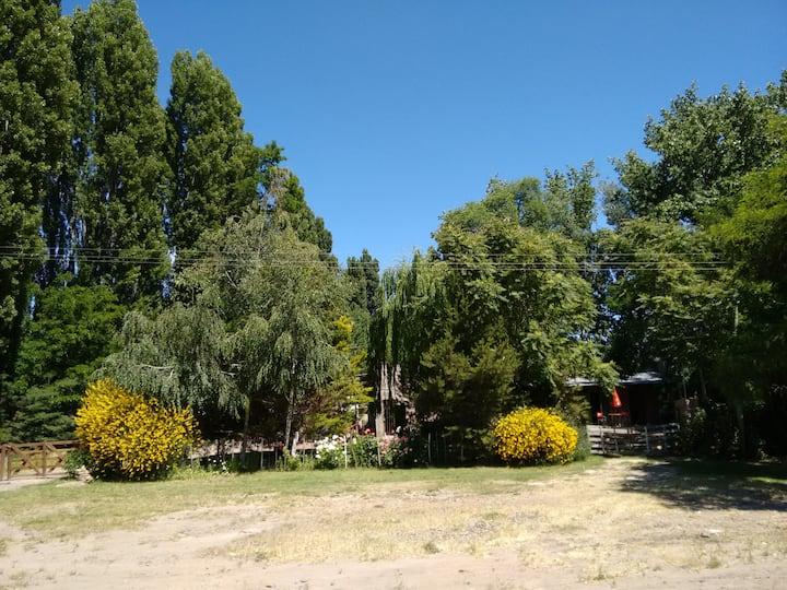 Picun Ranch, tranquilidad y descanso  sobre ruta.
