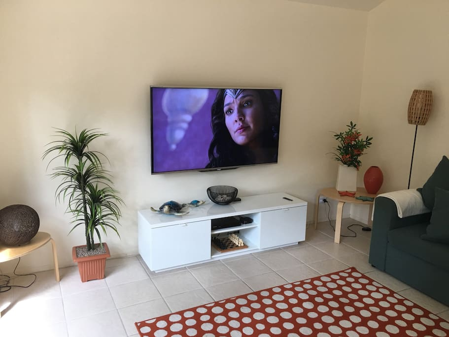 "Lounge room, 60"" TV mounted on wall for kids safety. iTunes & Netflix available through Apple TV, with Blu-Ray DVD."