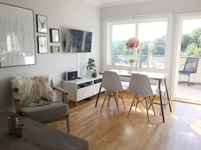 Central 3 bedroom apartment in Trondheim