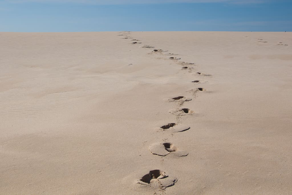Pristine dunes, long walks on the white sanded beach...