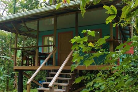 jungle House Bamboo hill