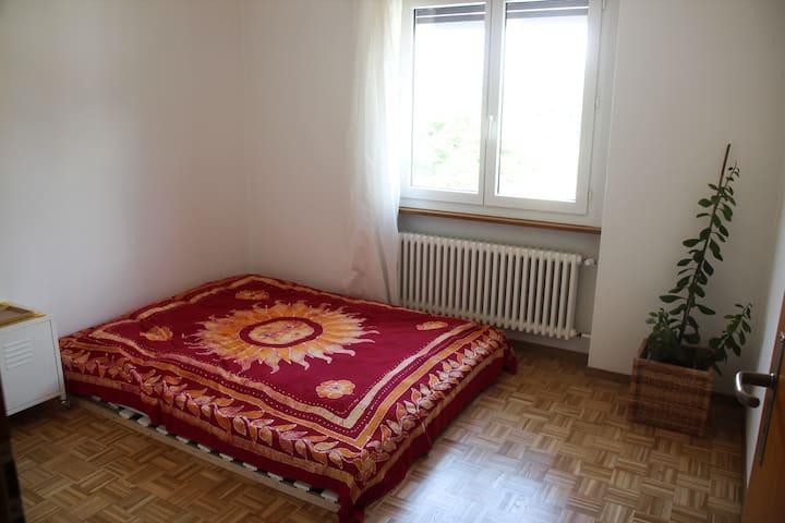 Private Room in a Share Apartment (Bellinzona)
