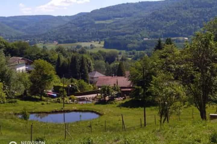 Appartement au cœur de forêt Vosgienne
