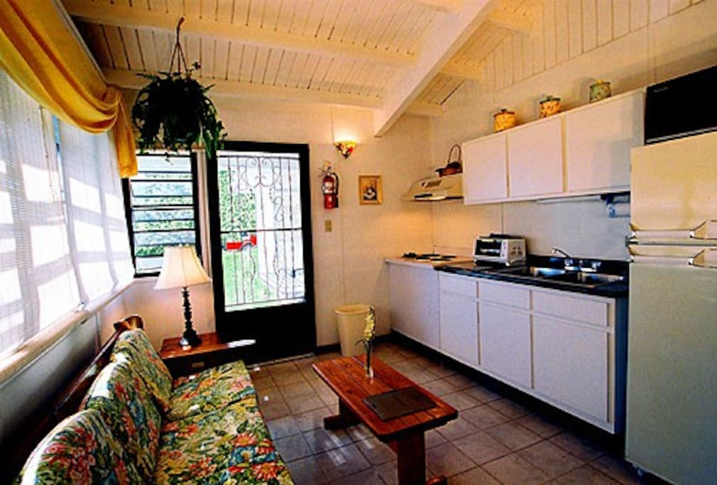 Kitchen-living area of apt., typical