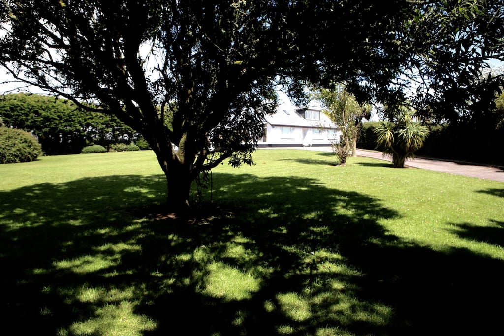 Front Lawn view