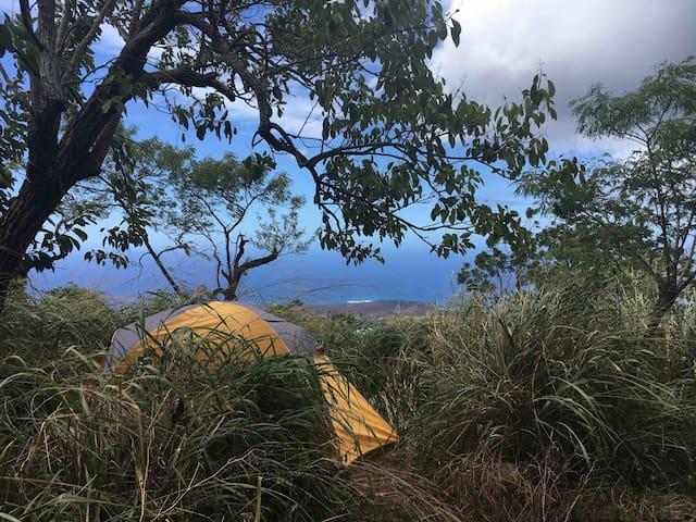 Camp on  Haleakala - Yellow Tent (Upcountry Maui)