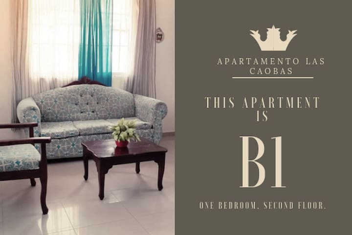 (AC/WIFI/SECURITY) 1BR Apartment Las Caobas #B1