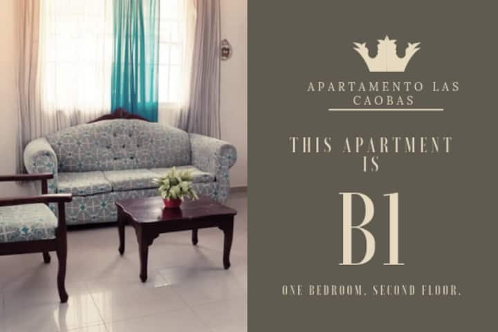 Safe+Quiet Private 1BR Apartment at Las Caobas #B1