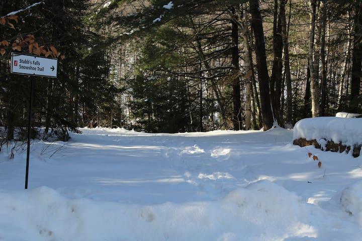 Arrowhead Provincial Park Snowshoeing.  Over 6 km snowshoe trails