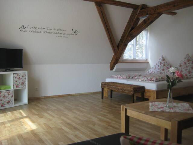 Haus Gartentraum (Sommerhausen), Appartement Rosenzauber (50qm) mit Balkon und WLAN