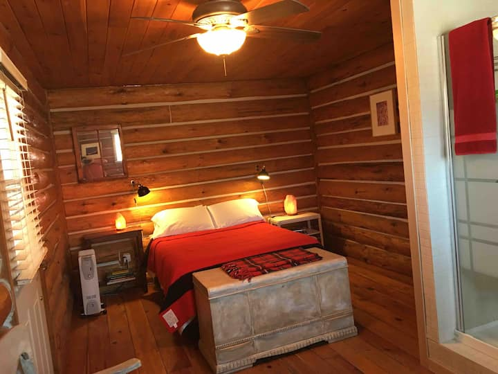 A cabin experience, leaving you wanting more.