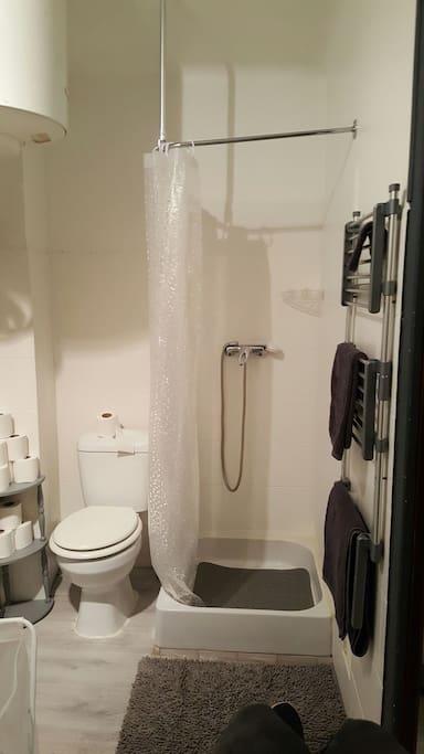 la salle de bain avec à votre disposition du savon, papier toilette ainsi que des serviettes de douche