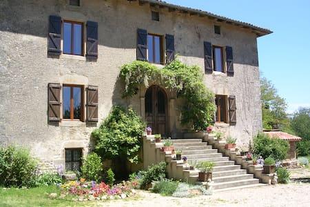 chateau de lantuejouls - Saint-Cirgues