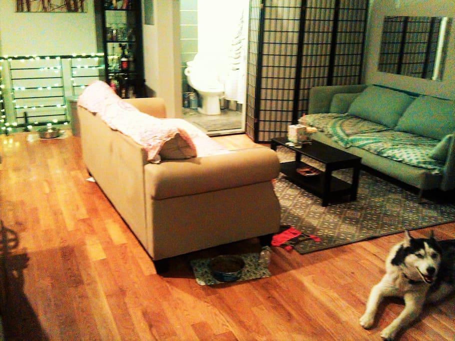 Very Bushwick livingroom ... Capone our Husky approves :)