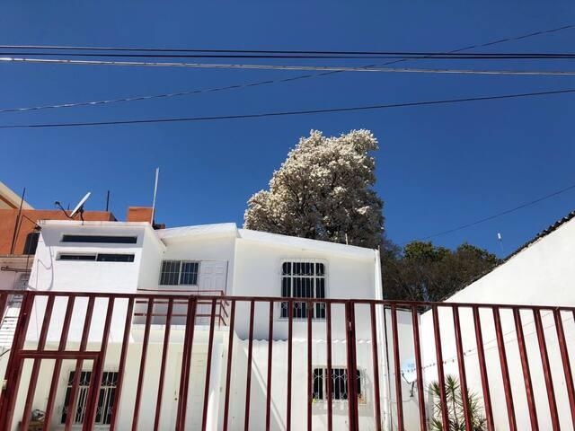 La casa blanca 1