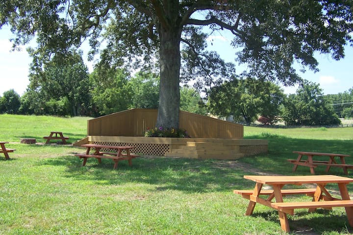 The Wedding Tree!  Events, Concerts & Camping!