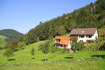 Ebersbacher Sonnenhalde - Gutach (Schwarzwaldbahn) - 家庭式旅館