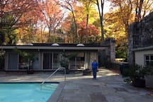 FALL colors of zen house