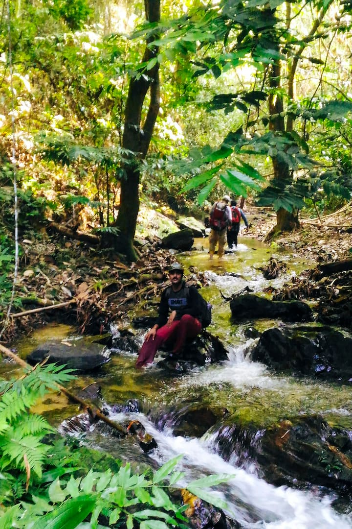 Walking through streams