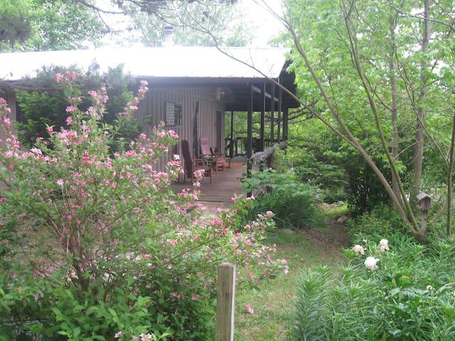 An Ozark Oasis Cabin - Jasper
