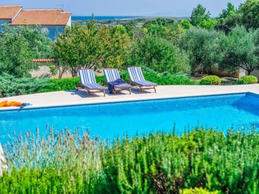 Villa Belinda - Istria - Croatia