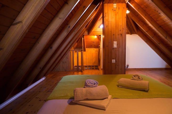 Dreamy Loft apartment Lixouri