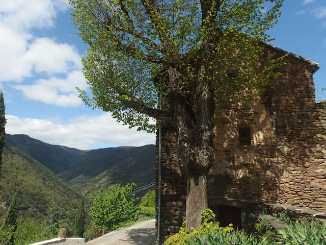 Mas cévenol en Sud Ardèche: les Vans