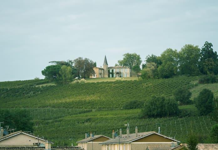 Le château vu du village de RIons