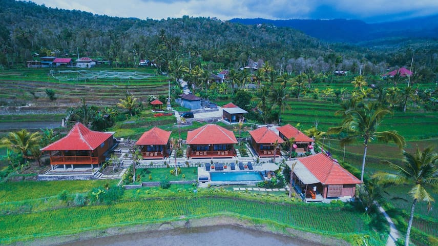 Paddy fields and hills view villa