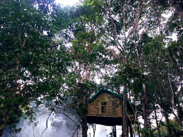 Bamboo House at Kodaikanal