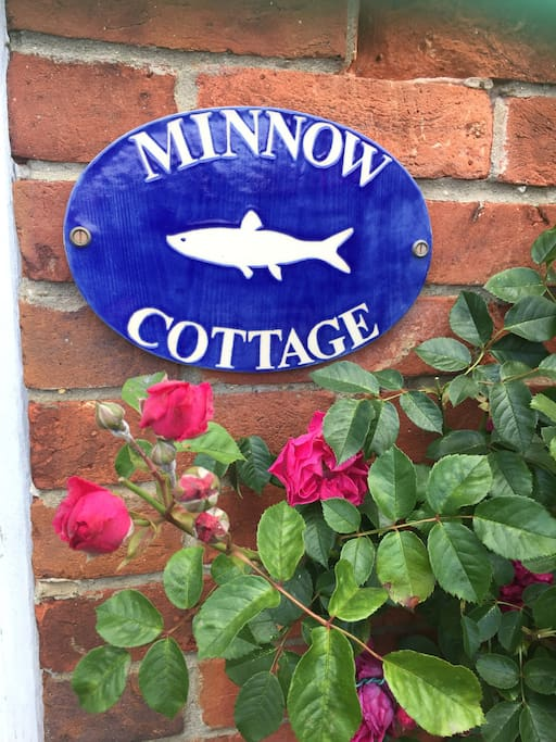 Can you find the Minnows at the secret water splash in the village?