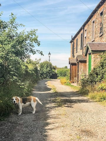Field view cottage. 2 bed cottage in Port Carlisle