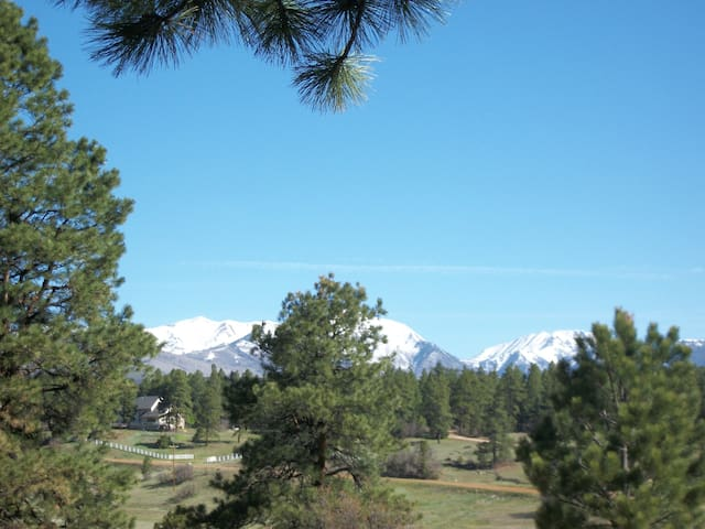 Mountain Peace, Ponderosa Pine Privacy! - Durango - Apartment
