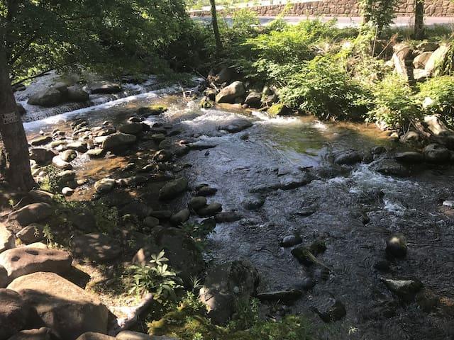 Creekside Condo- 2 bed/2 bath- walk to downtown