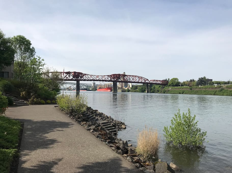 Greenway access all along Willamette River