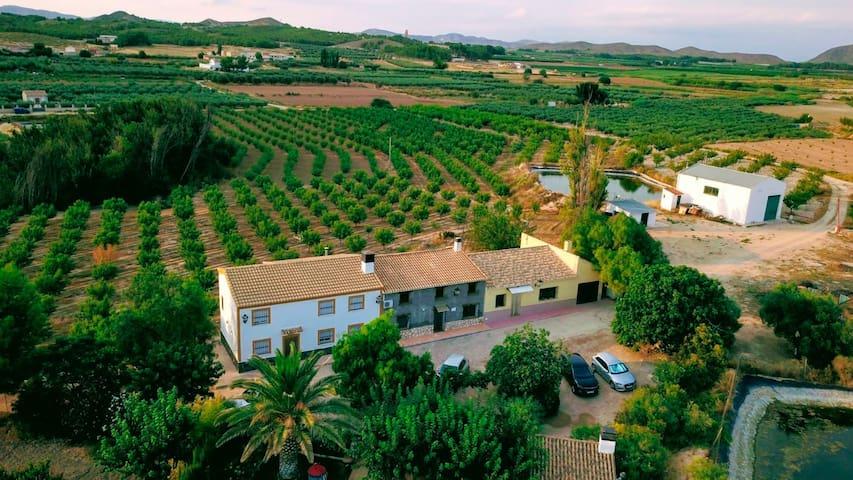 Casa rural en los campos de Hellín